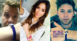One Direction star and a host of famous faces join Furness shops to back cancer campaign