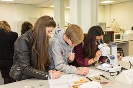Talented Barrow students take on Royal Society of Biology Quiz