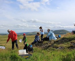 Discover incredible insects at Eycott Hill Nature Reserve
