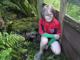Young wildlife watcher wins award